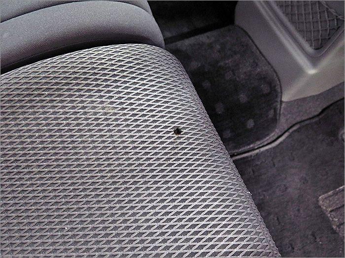 運転席シートにコゲ穴があります。
